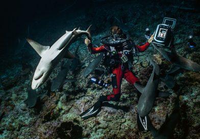 22. Međunarodni festival podvodnog filma u Beogradu